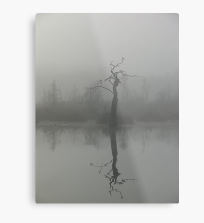 The Bird Tree Metal Print
