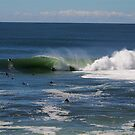 Shark Island Line up on Big Friday by Andrew  MCKENZIE