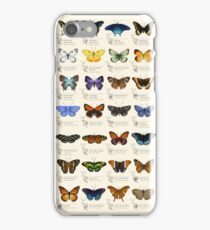 Butterflies of North America iPhone Case/Skin