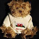 Welsh Teddy Bear by Bev Pascoe