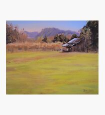 Orchard View Photographic Print