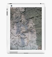 Grit of the Earth iPad Case/Skin