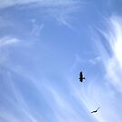 Two Flew by LouJay
