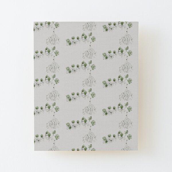 Sketchy Sedum Wood Mounted Print