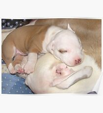 Mom's My Favorite Pillow Poster