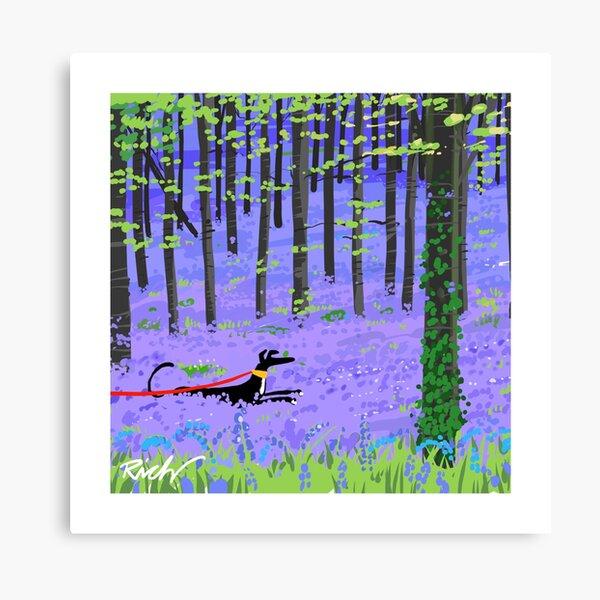 Bluebell Hound Canvas Print