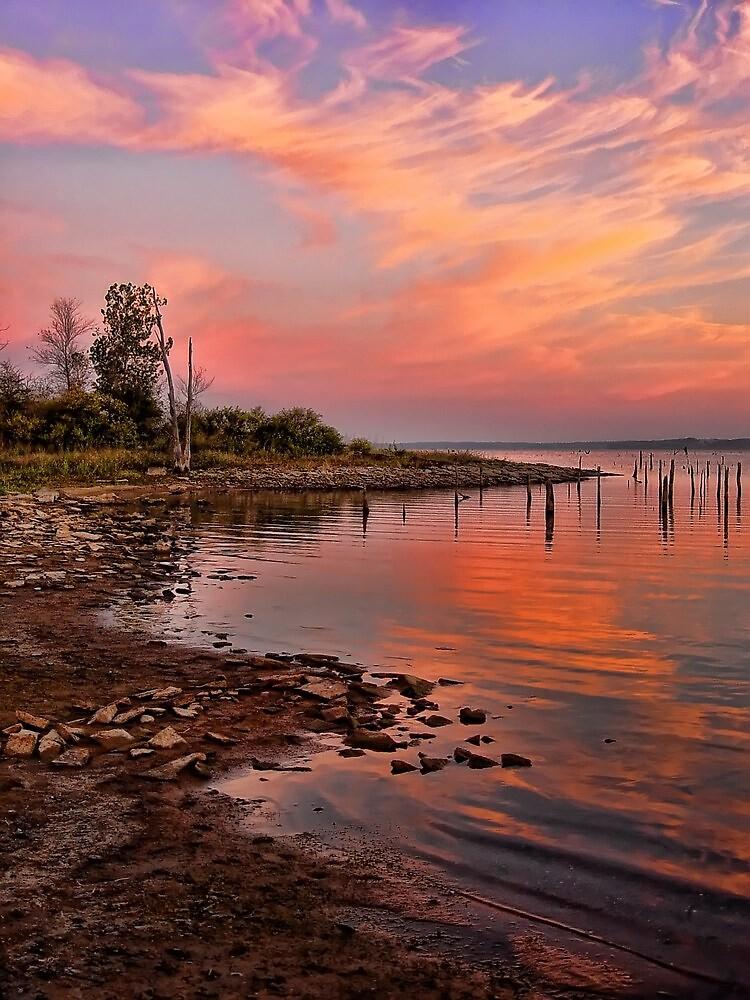 Beautiful Morning by Carolyn  Fletcher