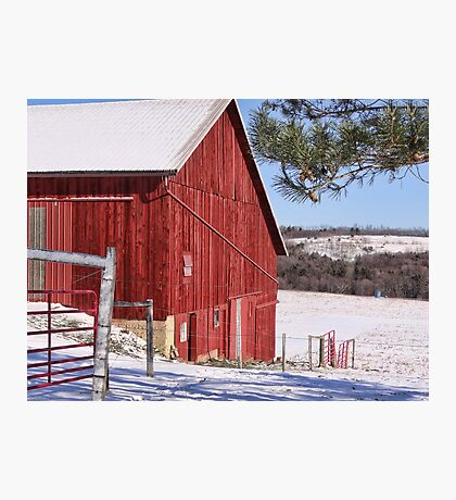 Red on white Photographic Print
