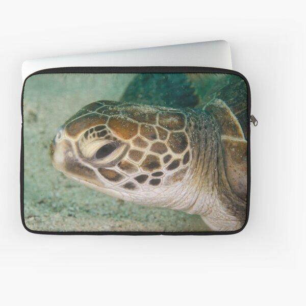 Green Turtle - Chelonia mydas Laptop Sleeve