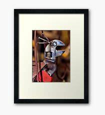 Quit Your Squawking! Framed Print