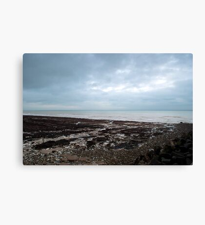 These Shores Canvas Print