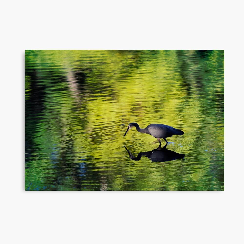 Wading Hunter - 2 Canvas Print