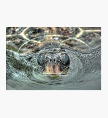 Surfacing For Air Photographic Print