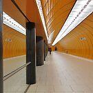 Munich Train Travel by vonb