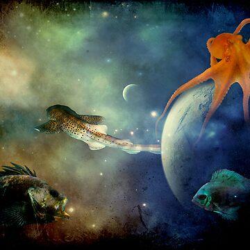 I Wonder If Fish Dream by Johnson-Mosley