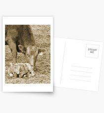 Nudge Postcards