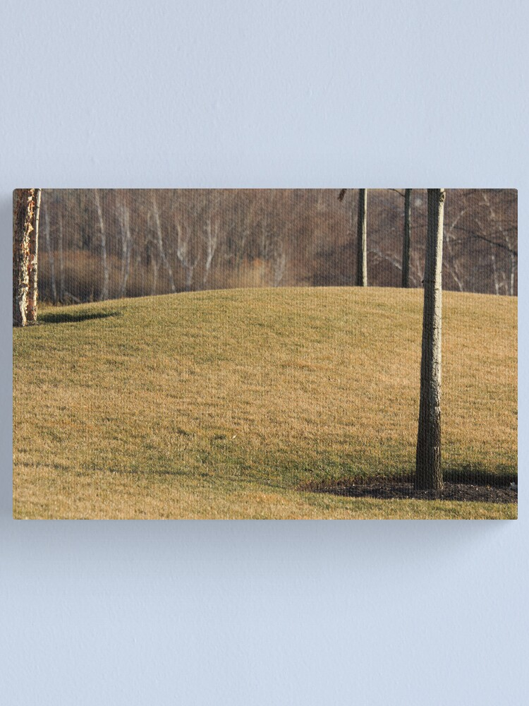 Alternate view of The Hill Canvas Print