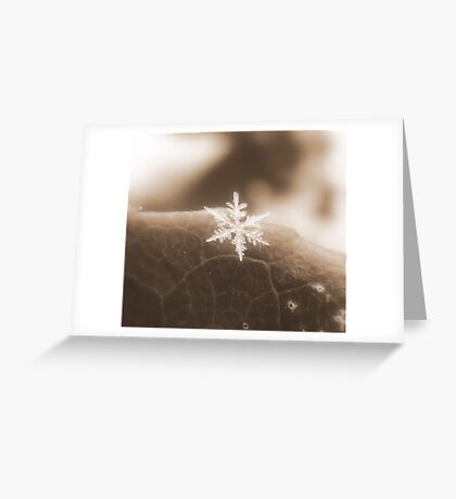 One Single Chance by Chance Greeting Card