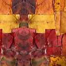 leaf scape by H J Field