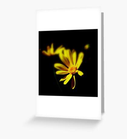 Light through the Dark Greeting Card