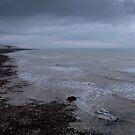 Along the Coastline by Lennox George