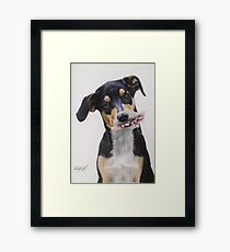 Max, Pastel Dog Portrait Framed Print