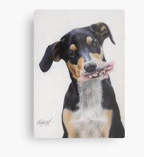 Max, Pastel Dog Portrait Metal Print