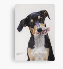 Max, Pastel Dog Portrait Canvas Print
