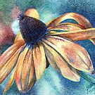 Brown Eyed Susan  by Judy Bergmann