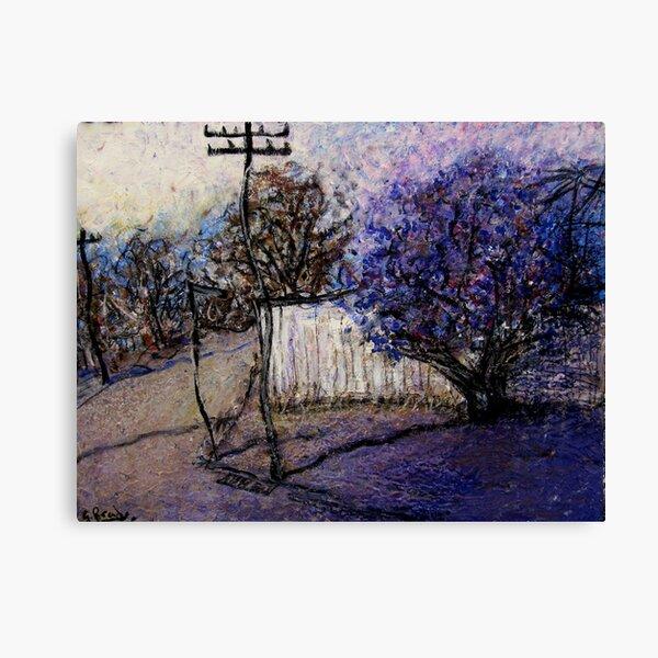 tipacena tree Canvas Print