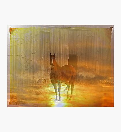 Haunted Horse Photographic Print