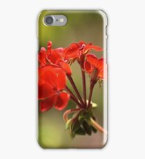 Geraniums iPhone Case/Skin