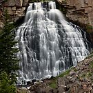 Yellowstone Waterfall by jeff welton