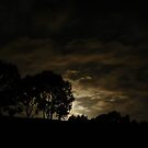 Night Landscape by Joan Wild