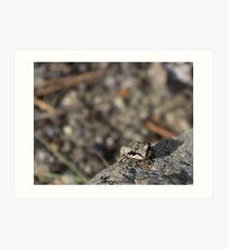 Froggie! Art Print