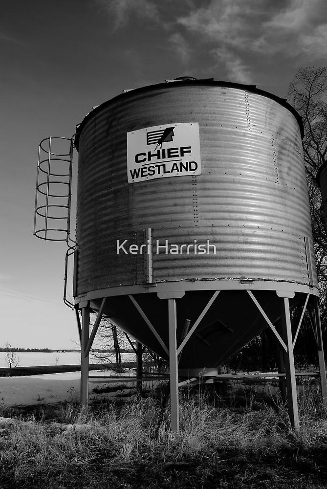 Chief by Keri Harrish