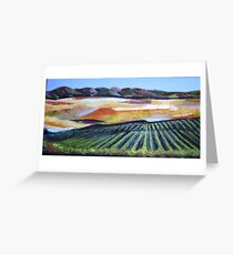 The Vineyard in a New Light Greeting Card