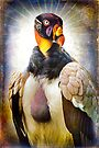 A Finer Feathered Friend-King Vulture by alan shapiro