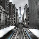Trumped Tracks. by sanzphotos