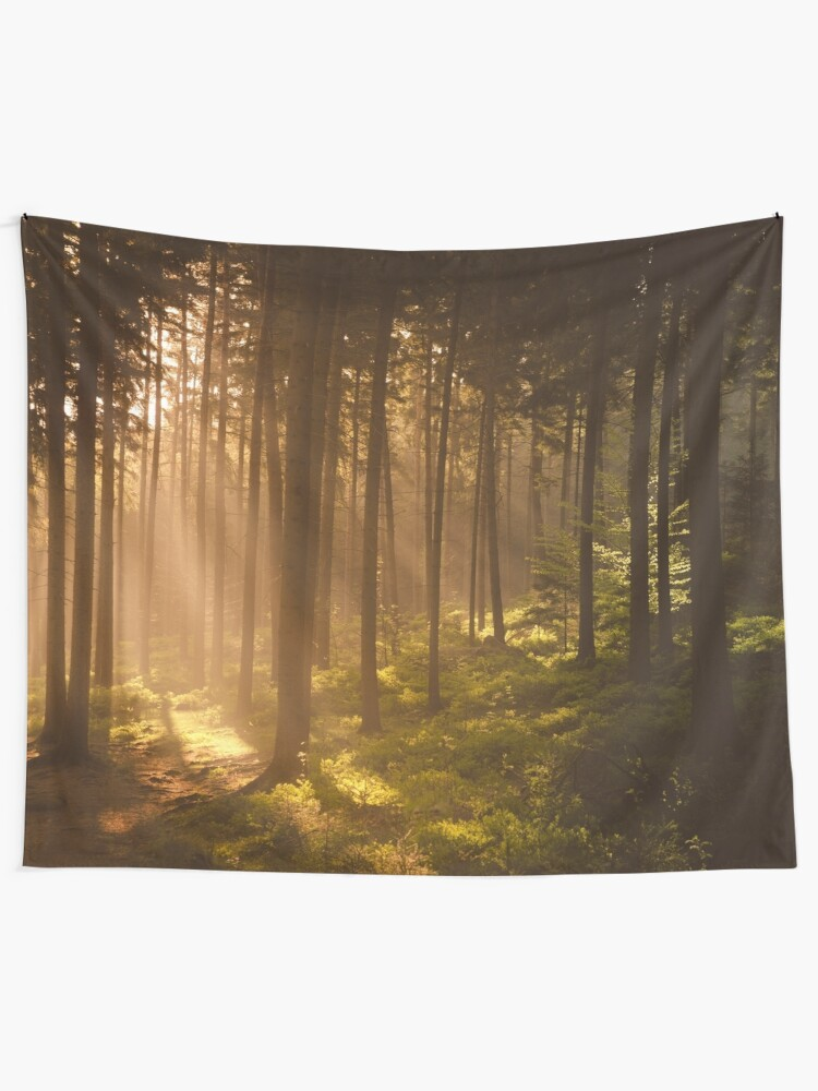 Alternate view of Morning forest Tapestry