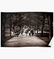 Greenwich Park Poster