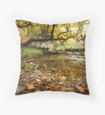 You can lead a horse to water ............ Throw Pillow