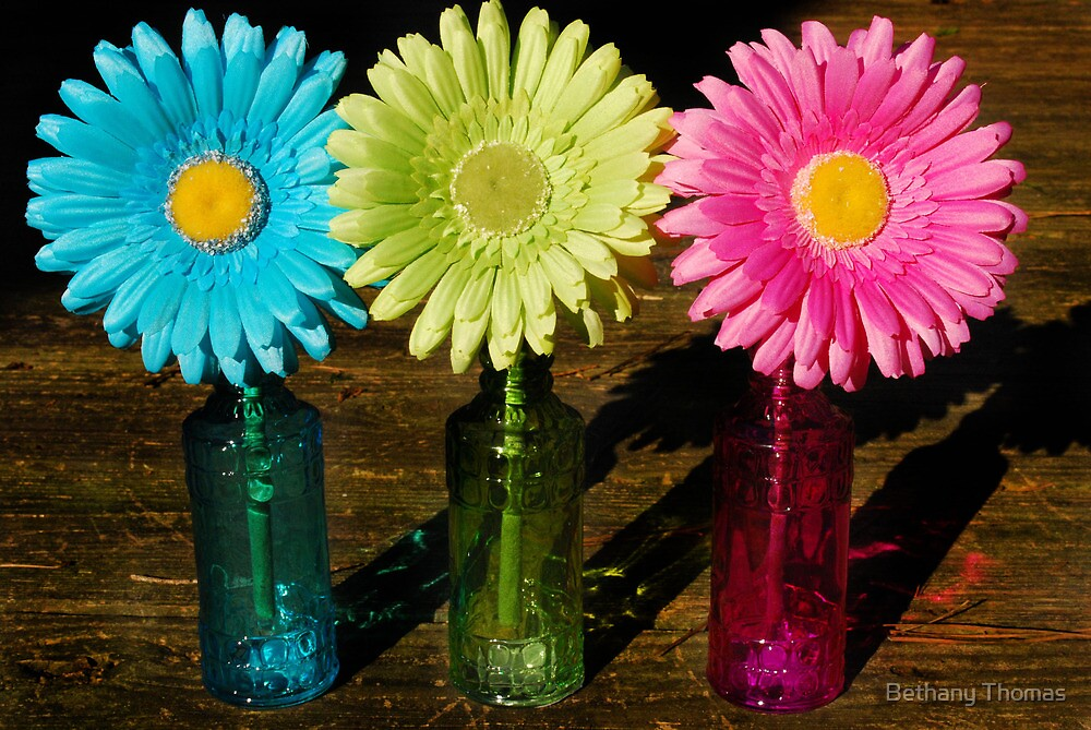 Colorful flowers by Bethany Thomas