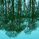 Reflection by MarkBigelow