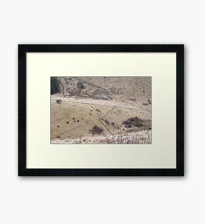 Dry Land Framed Print