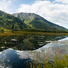 Tern Lake, Kenai Peninsula, Alaska by SusanAdey
