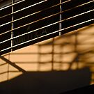 staircase shadow by richard  webb