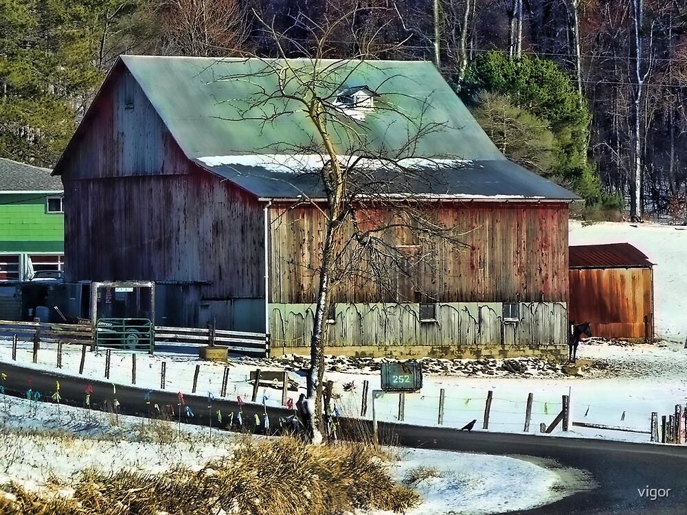 The Winter Homestead by vigor