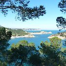 View from Cap Negre by Fay  Hughes