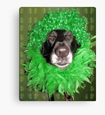 My Mother Dresses Me Funny Canvas Print